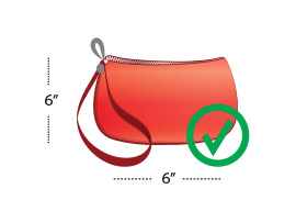 purse graphic